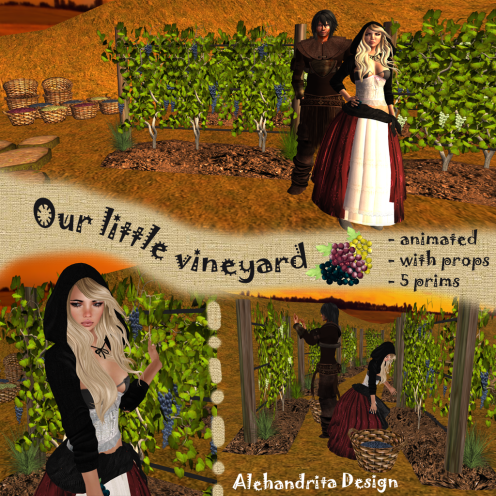 our little vineyard 4 sl